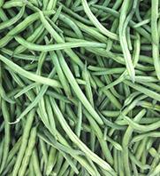 Organic Vegetable Seeds Online - Beans