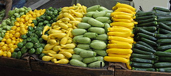 Organic Vegetable Seeds Online Squash